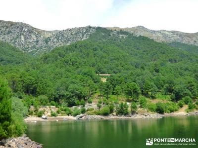 Pinares de la Angostura enrutas senderismo cercedilla ruta sierra madrid Piedralaves;rutas faciles s